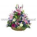 Conjunto de hermosas flores